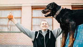 Comportementaliste et éducateur canin grand